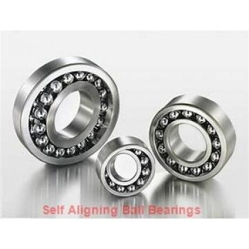 NSK 1206KTN  Self Aligning Ball Bearings