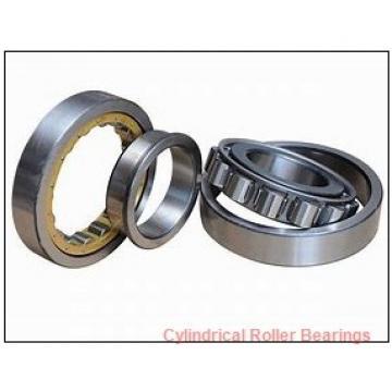 2.559 Inch | 65 Millimeter x 5.512 Inch | 140 Millimeter x 1.299 Inch | 33 Millimeter  NACHI NU313MY C3  Cylindrical Roller Bearings