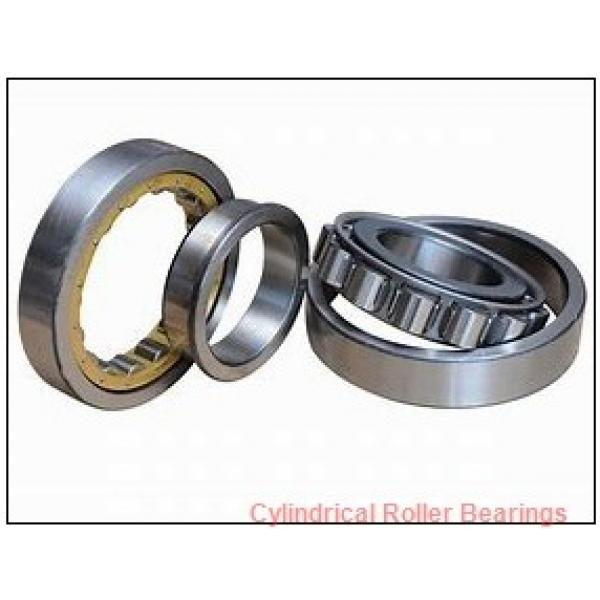 2.165 Inch | 55 Millimeter x 2.75 Inch | 69.85 Millimeter x 1.938 Inch | 49.225 Millimeter  ROLLWAY BEARING E-311-60  Cylindrical Roller Bearings #1 image